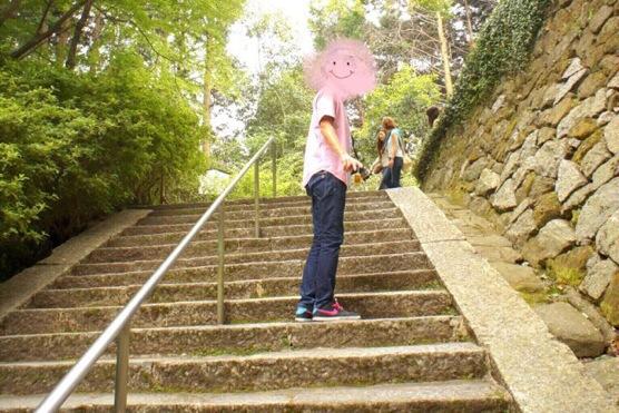 関西のあじさいの名所1位【大和郡山市の矢田寺】の階段